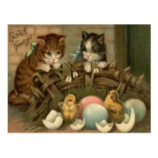 Cat Kitten Easter Colored Painted Egg Chick Postcard
