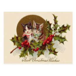 Cat Kitten Holly Winterberry Postcard