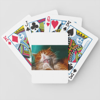 cat kitten kitties cute pet purr meow bicycle playing cards