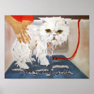 Cat Kitty Vet Pet Cat Bath Humor Funny Poster
