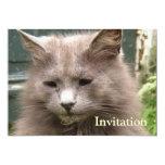 "Cat 'Kyra' portrait 5"" X 7"" Invitation Card"