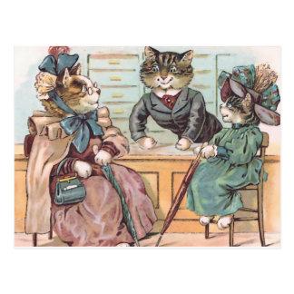 Cat Ladies Shopping Postcard