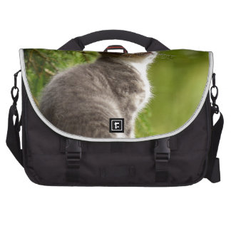 cat laptop commuter bag