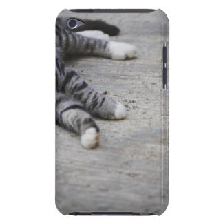 Cat laying on sidewalk barely there iPod case