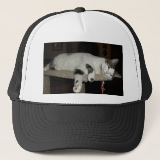 cat lazy day trucker hat