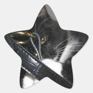 Cat Left Holding the Bag Star Sticker