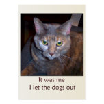 Cat Let The Dogs Out Large Business Cards (Pack Of 100)