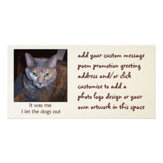 Cat Let The Dogs Out Card