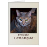 Cat Let The Dogs Out Greeting Card