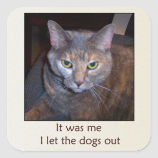 Cat Let The Dogs Out Square Sticker