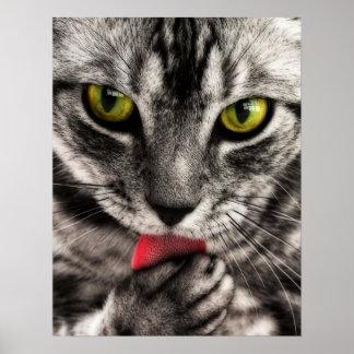 Cat Lick Poster