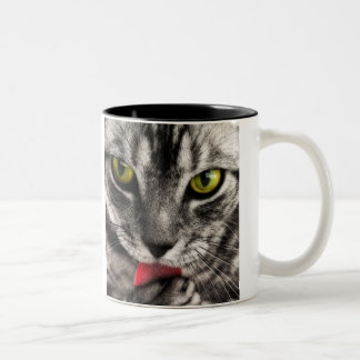 Cat Lick Two-Tone Coffee Mug