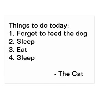 Cat List - Funny text Postcard