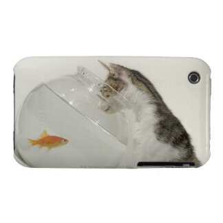 Cat looking at fish in fishbowl iPhone 3 cases