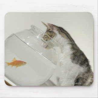 Cat looking at fish in fishbowl mouse pad