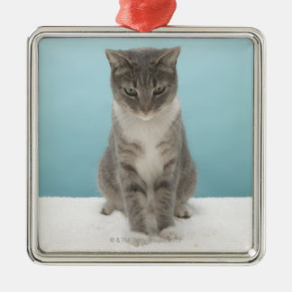 Cat looking at toy mouse on rug christmas tree ornaments
