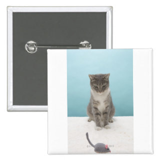 Cat looking at toy mouse on rug pinback button