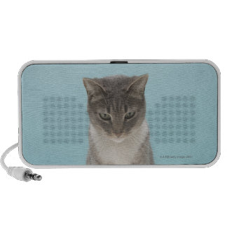 Cat looking at toy mouse on rug travelling speaker