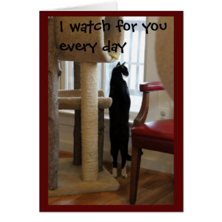 Cat Looking Out Window Card