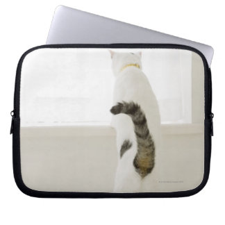 Cat looking out window, rear view computer sleeve