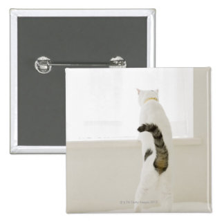 Cat looking out window, rear view pinback button