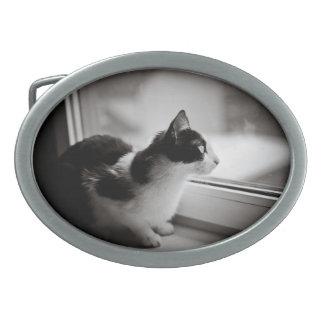 Cat looking outside belt buckle