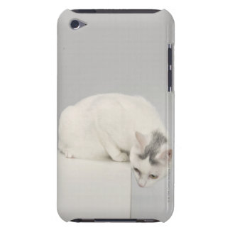 Cat looking over an edge iPod Case-Mate case
