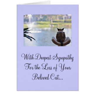 Cat Loss of Pet Sympathy Card