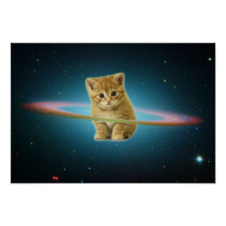 Cat lost in space poster