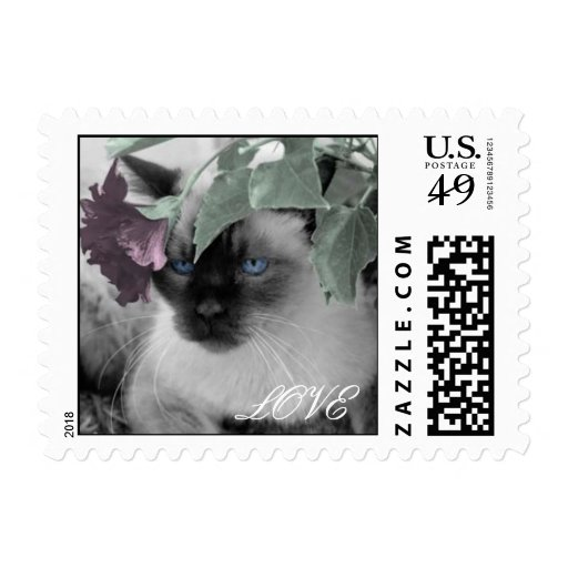 Cat Love Stamps