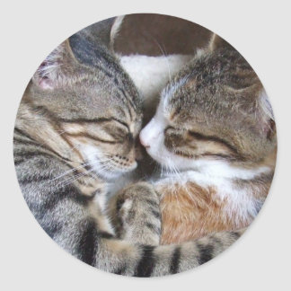 Cat Love Stickers