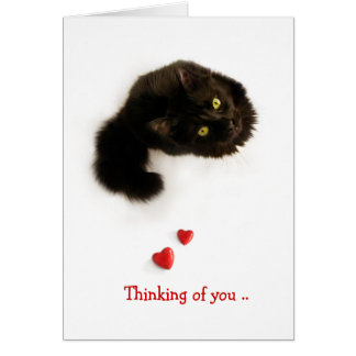 Cat Love Thinking Of You card