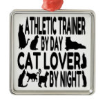 Cat Lover Athletic Trainer Christmas Ornament