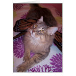 Cat lover card