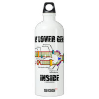 Cat Lover Genes Inside (DNA Replication) SIGG Traveler 1.0L Water Bottle