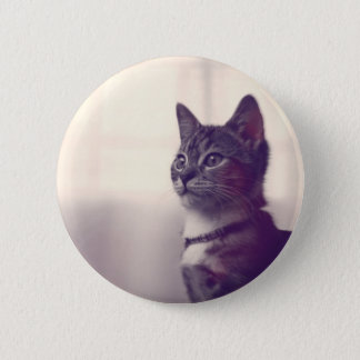 Cat lover gifts, cat pinback buttons