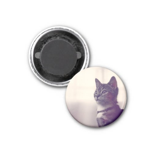 Cat lover gifts, cat themed gifts, cat magnets