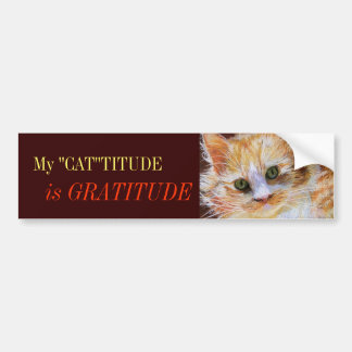 Cat Lover Gratitude Orange Cat Face Bumper Sticker Car Bumper Sticker