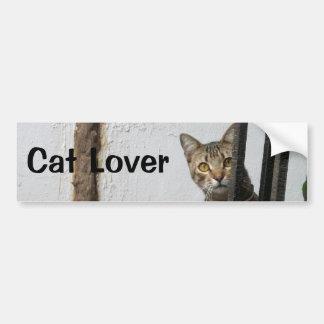 Cat Lover Tabby cat bumper sticker