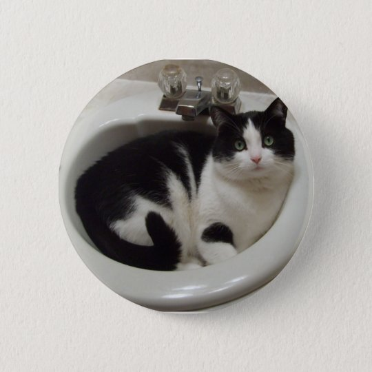 Cat lovers delight button