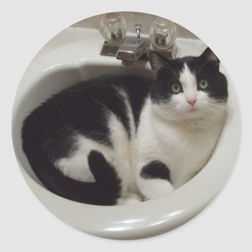 Cat lovers delight round stickers