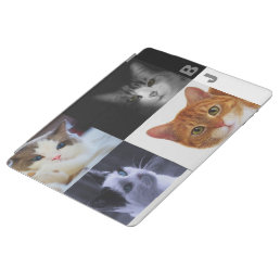 Cat Lovers iPad 2/3/4 Cover