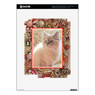 Cat Lover's Vintage Jewelry Photo Design Decal For iPad 3