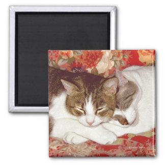 """""""Cat Luv #12"""" Magnet"""