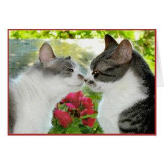 """Cat Luv 1"" Card"