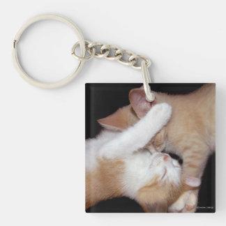 """Cat Luv #5"" Keychain"