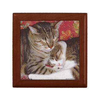 """""""Cat Luv #8"""" Gift Box"""