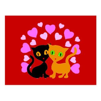 Cat luv Postcard