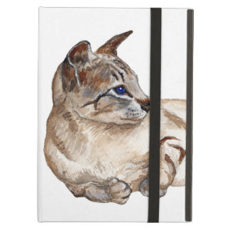 cat lying down iCase for the iPad iPad Air Covers