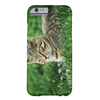 Cat lying in grass barely there iPhone 6 case